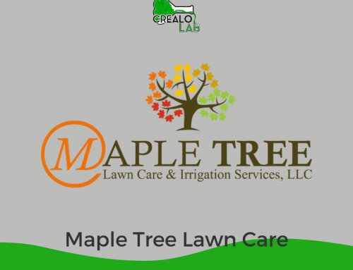 Maple Tree Lawn Care & Irrigation Service